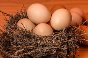 masque-au-blanc-d'œuf